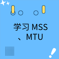 就是要你懂 TCP | 通过案例来学习 MSS、MTU
